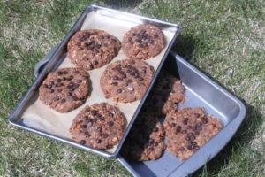 Breakfast Cookies (10)